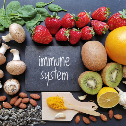 Understanding How the Immune System Works