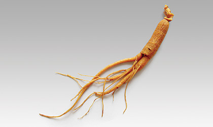 Korean Ginseng Extract - Our Supplement Process