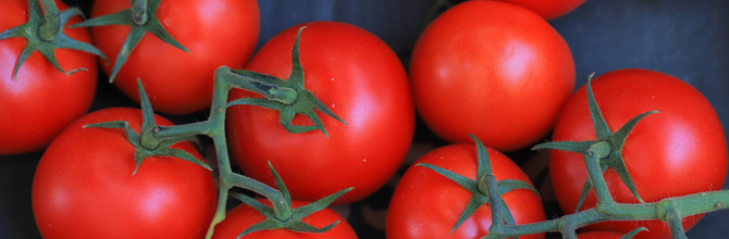 Why We Don't Sell Lycopene