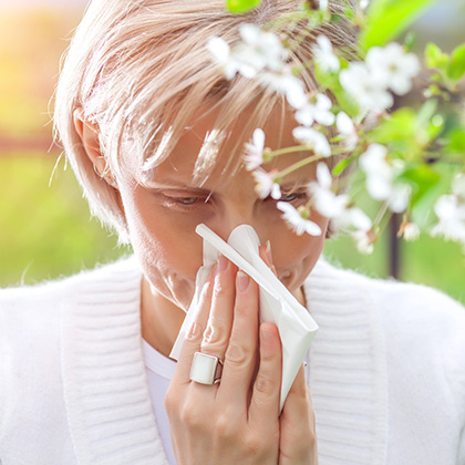What is Hay Fever?